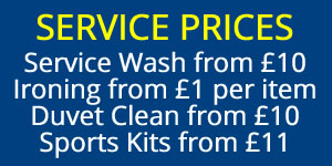 prices at trissy laundry zone